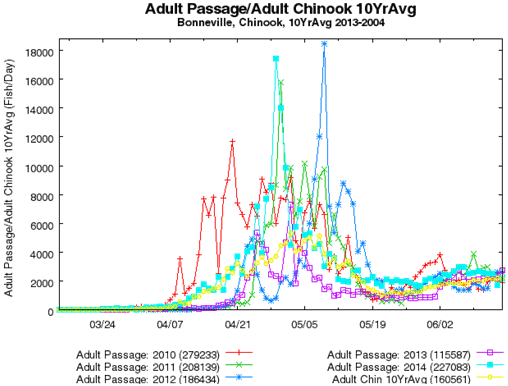 Line plot of adult chinook passage count over time
