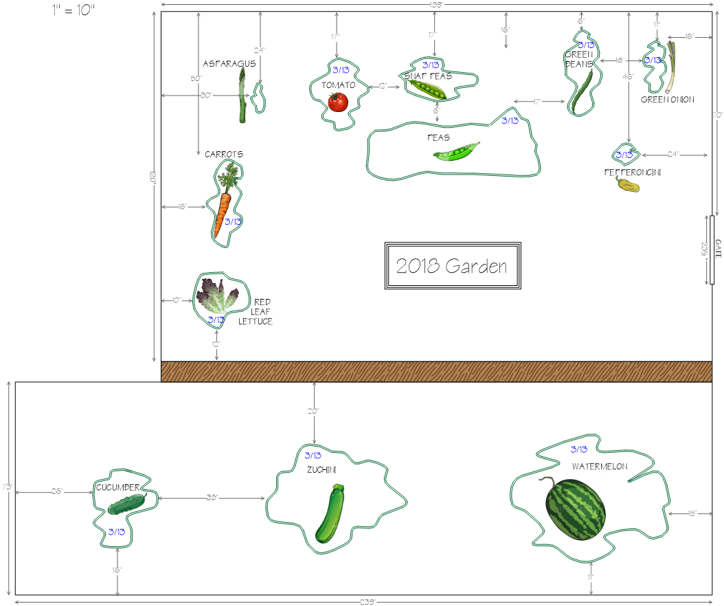 Improved architectural layout of my proposed 2018 vegetable garden, created in Surfer 14.