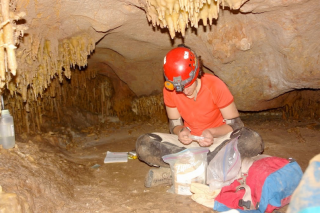 Customer Spotlight: Using cave speleothems and Grapher to reconstruct past climates.