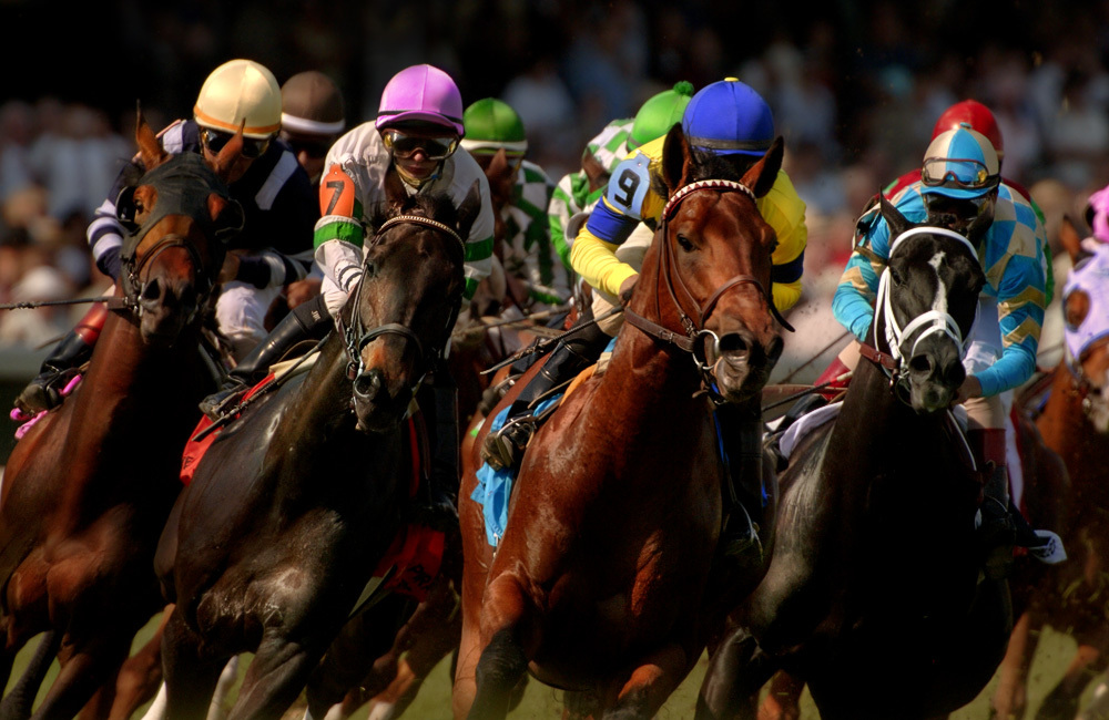 A Graphical Look at the 2016 Kentucky Derby - Blog