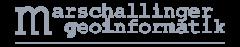 logo-marshallinger.png
