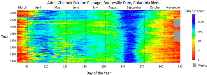 Surfer 2D & 3D modeling software: 70 years of Chinook Salmon data displayed as a time map
