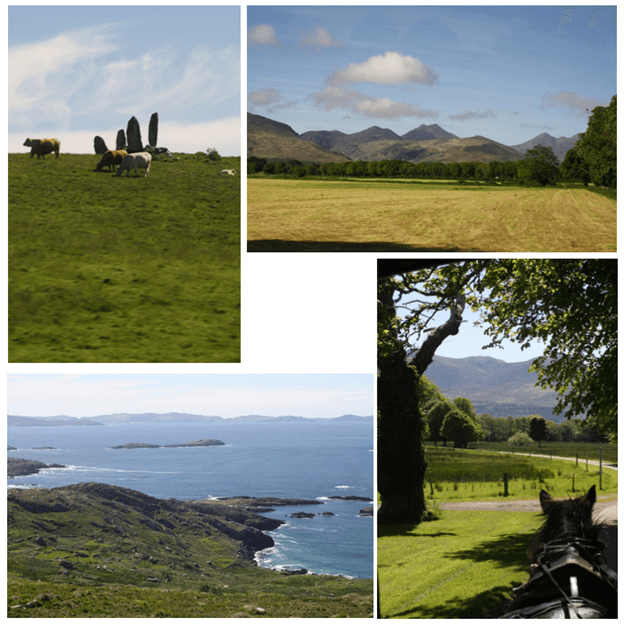 Day 4 in Paddywagon 9-day tour of Ireland: Ring of Kerry and Killarney National Park.